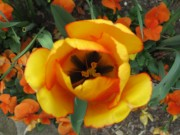 2012-04-30_9