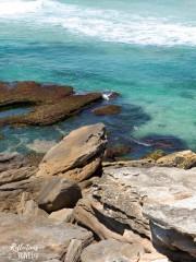 Bondi to Tamarama coastal walk